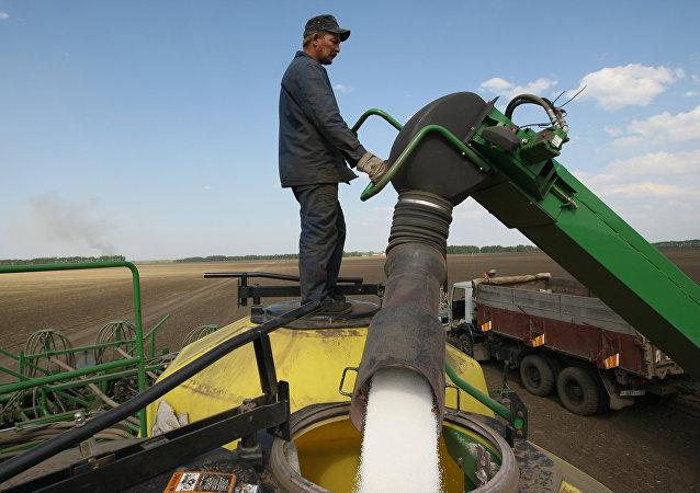 A worker loads fertilizers for treating fields of Irmen stud farm.