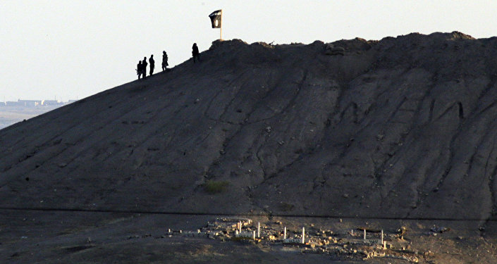 In this file photo Daesh terrorists are seen after placing their group's flag on a hilltop at the eastern side of the town of Kobani, Syria