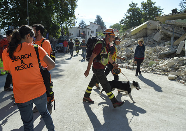 An emergency service personnal walks with his rescue dog next to volunteers participating in rescue operation near rubble and debris of a destroyed building marked with a security cordon and a excavator in the damaged central Italian village of Amatrice on August 26, 2016 two day after a 6.2-magnitude earthquake struck the region killing some 267 people