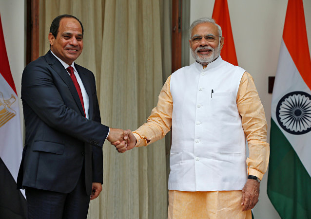 Egypt's President Abdel Fattah al-Sisi (L) shakes hands with India's Prime Minister Narendra Modi during a photo opportunity at Hyderabad House in New Delhi, India