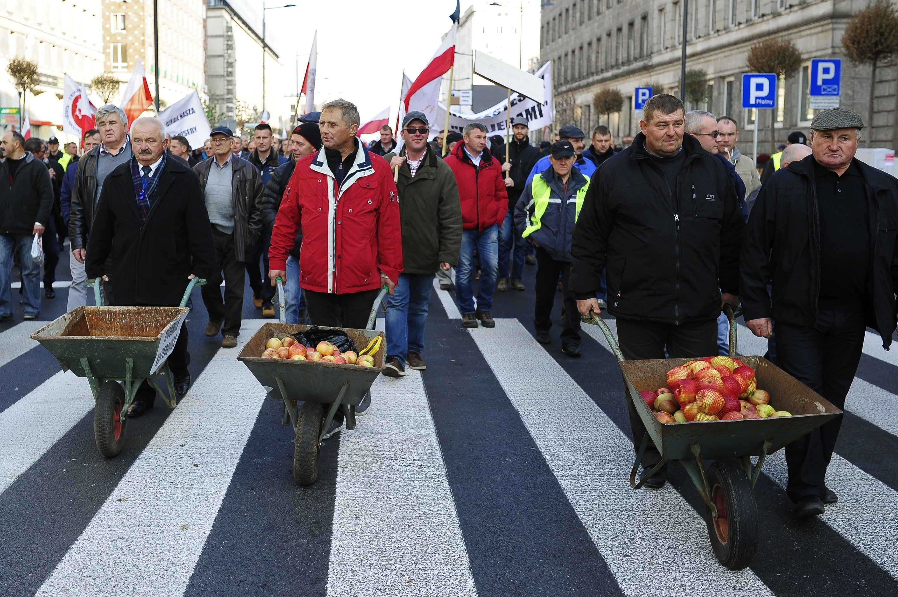 Hundreds of Polish farmers and horticulturists staged a march in Warsaw in protest against Russia's ban on the import of their fruit and vegetables. File photo