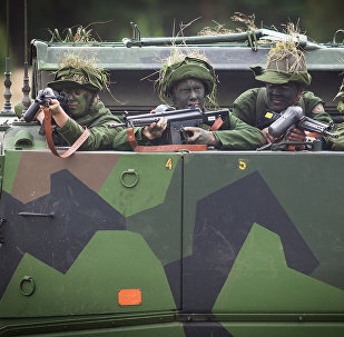 Swedish soldiers (photo used for illustration purpose)