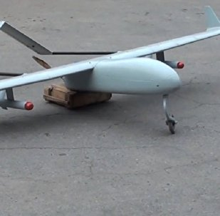 A Ukrainian drone loaded with explosives was intercepted by pro-independence militia, a militia representative from the self-proclaimed Luhansk People's Republic (LPR) said Sunday