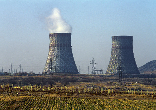 Metsamor Nuclear Power Plant. (File)