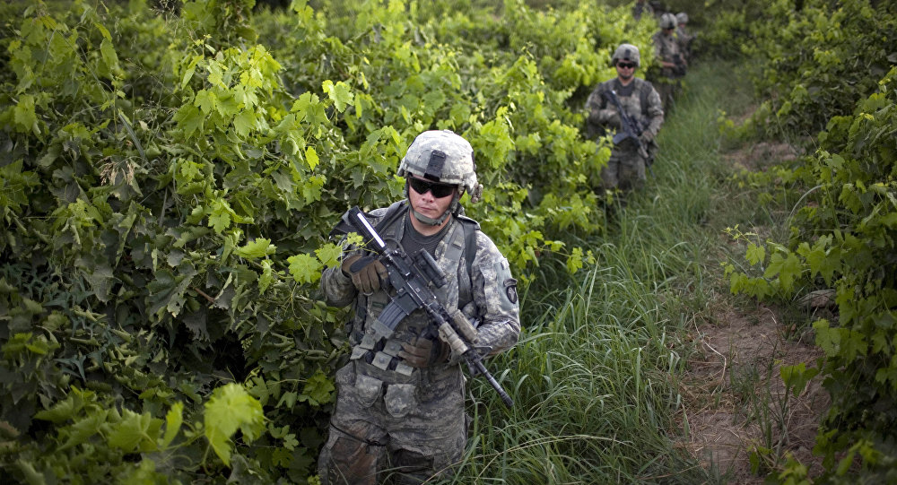 U.S. Army soldiers from the 1-320th Alpha Battery, 2nd Brigade of the 101st Airborne Division, walk among grape orchards during a patrol towards COP Nolen, in the volatile Arghandab Valley, Kandahar, Afghanistan, Tuesday, July 20, 2010