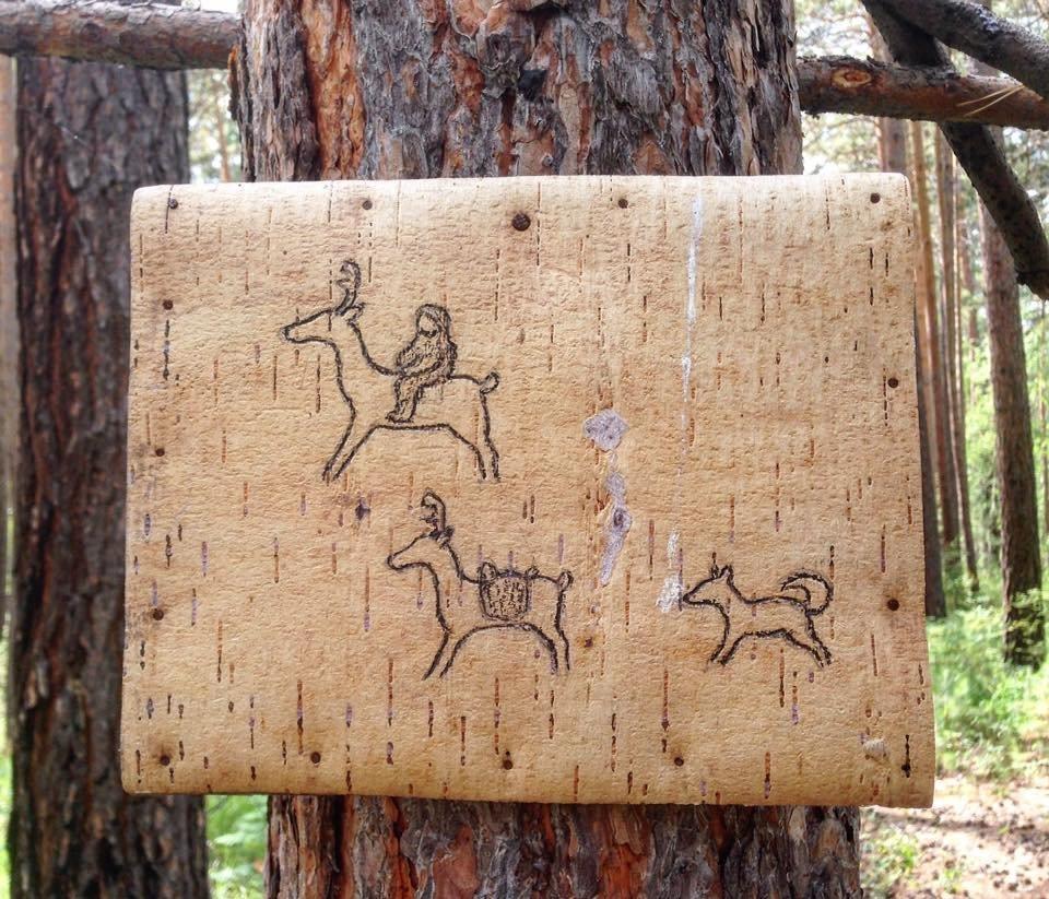 Drawings on birch bark