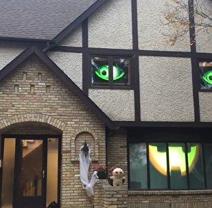 Funny Animated Halloween House 2016