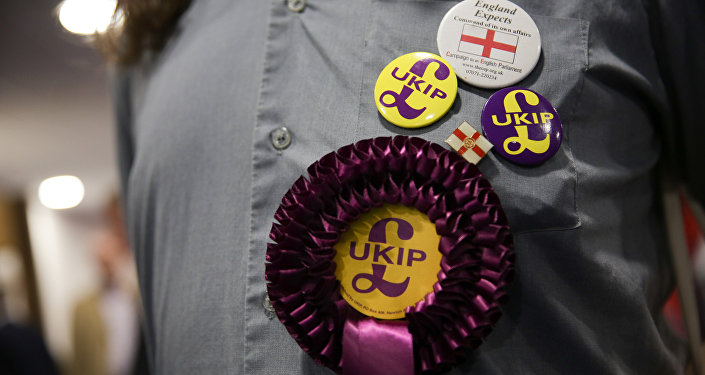A supporter of the anti-EU UK Independence Party (UKIP) wears a rossette and badges at the UKIP Autumn Conference in Bournemouth, on the southern coast of England, on September 16, 2016.