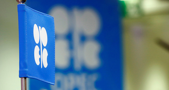 The OPEC flag and the OPEC logo are seen before a news conference in Vienna, Austria, October 24, 2016