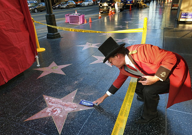 Trump Star Vandalized