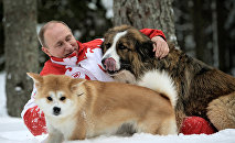 President Vladimir Putin and his dogs, Buffy the Bulgarian Shepherd and Yume the Akita Inu, walk in the Moscow Region. (File)