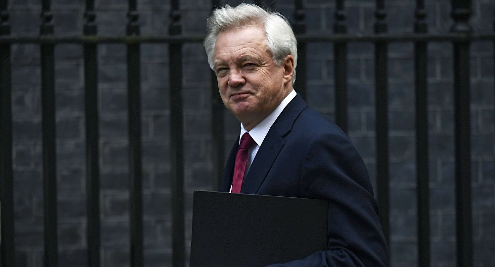 David Davis, Secretary of State for Exiting the European Union arrives at Downing Street in London, Britain October 24, 2016.