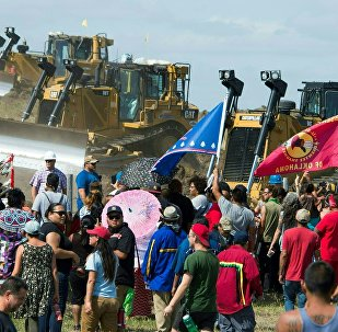 Members of the Standing Rock Sioux Tribe and their supporters opposed to the Dakota Access Pipeline (DAPL) confront bulldozers working on the new oil pipeline in an effort to make them stop, September 3, 2016, near Cannon Ball, North Dakota
