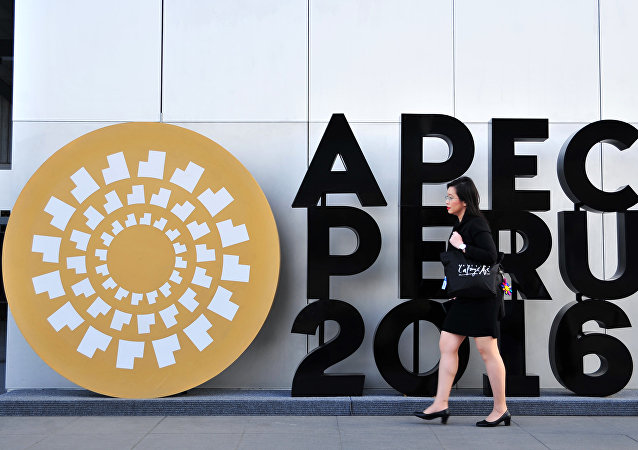 A woman walks by an APEC logo outside the Lima Convention Centre, during the Asia-Pacific Economic Cooperation (APEC) Summit on November 17, 2016 in Lima
