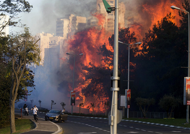People run as wildfires rages in Haifa, Israel, Thursday, Nov. 24, 2016