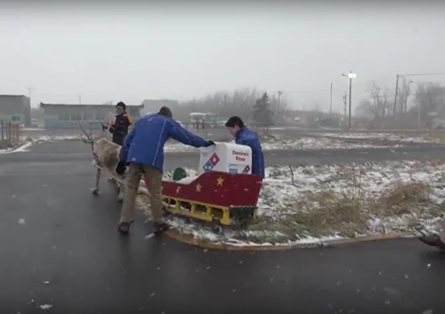 Domino's Japan reindeer delivery