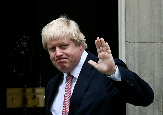 Britain's Foreign Secretary Boris Johnson arrives at Number 10 Downing Street in London, Britain October 24, 2016.