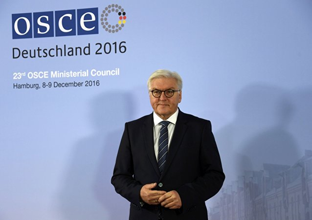 German Foreign Minister Frank-Walter Steinmeier waits for his counterparts at the 23rd OSCE Ministerial Council organized by Germany's OSCE Chairmanship in Hamburg, Germany December 8, 2016.