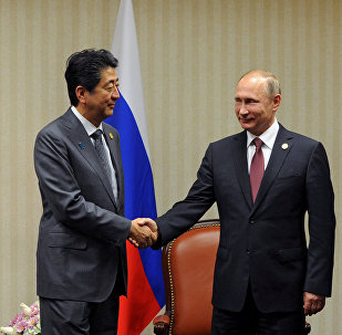 Russian President Vladimir Putin and Japanese Prime Minister Shinzo Abe, left, during a meeting on the sidelines of the APEC Leaders' Meeting in Lima