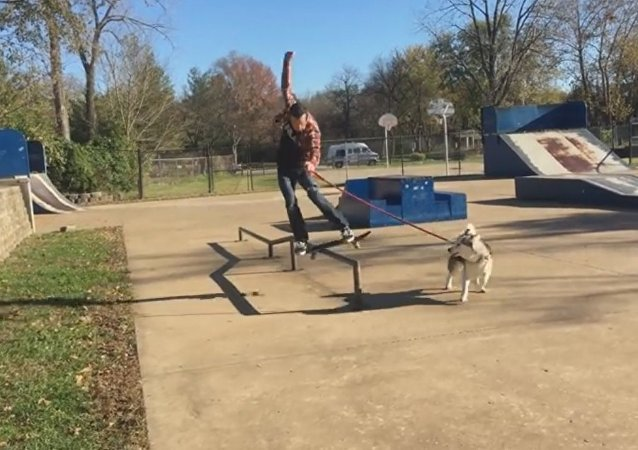 Dog Runs with Skateboarder