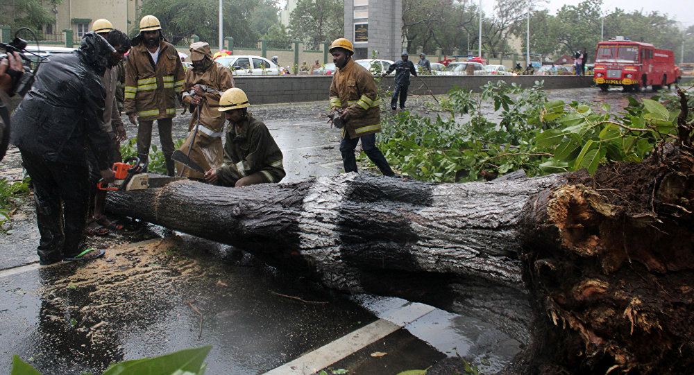 Rescue members cut a tree that fell on a road after it was uprooted by strong winds in Chennai, India, December 12, 2016