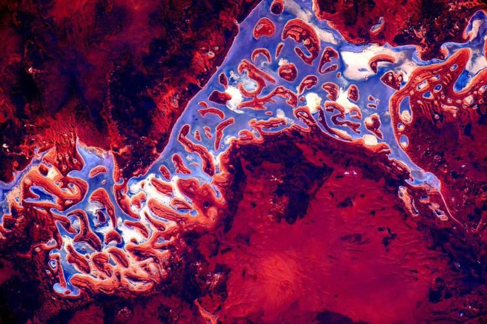 A picture of Australia by Scott Kelly