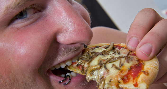 Insects pizza (File)