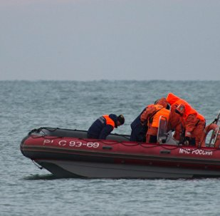 Search continues for bodies of Tu-154 crash victims in Sochi