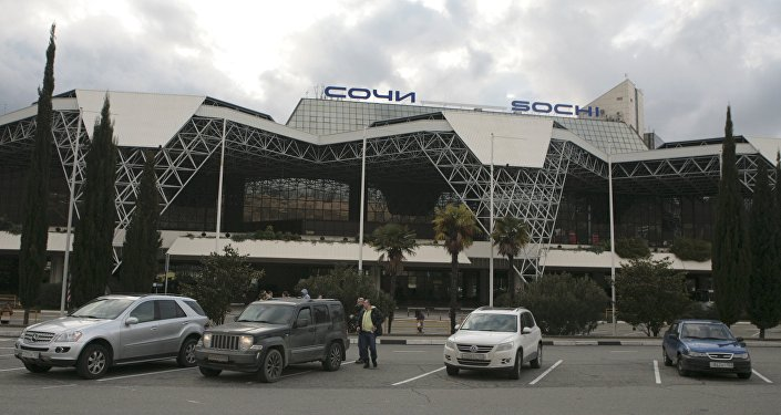 General view of the Sochi International Airport (Sochi-Adler Airport) in the Black Sea resort city of Sochi, Russia December 25, 2016