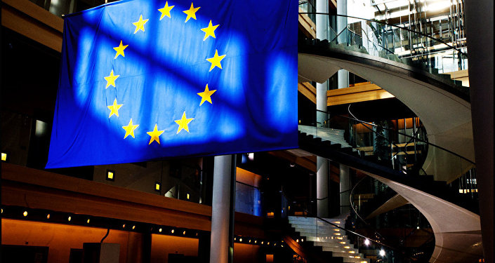 European Parliament flag