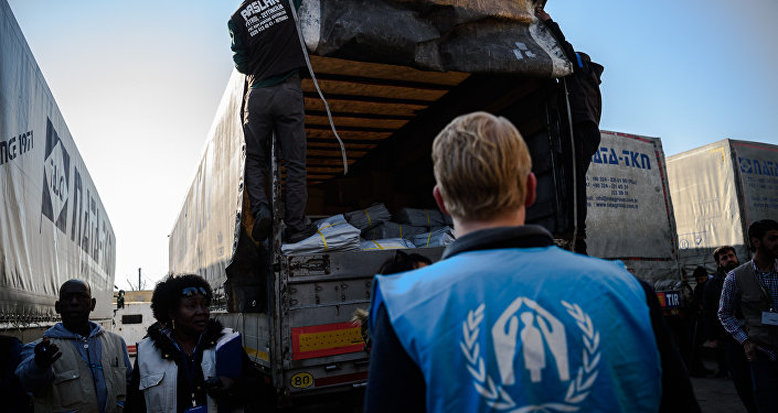 A UNHCR worker stands as workers carry humanitarian aid to a Syrian-bound truck at a UN transhipment hub at Cilvegozu in Reyhanli near the Turkish-Syrian border in Hatay on November 28, 2016