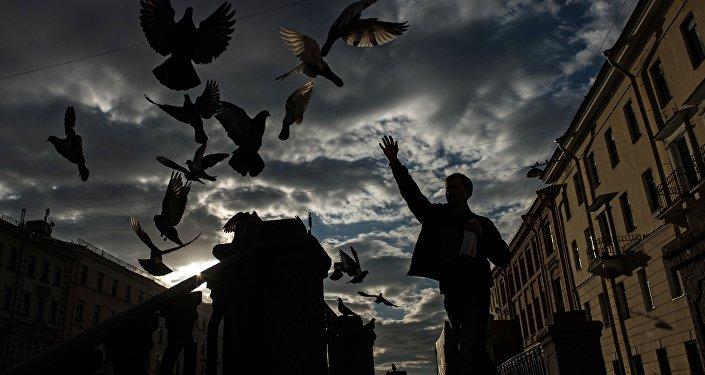 China's 'Birdman' Fights Poachers, Saves Lives