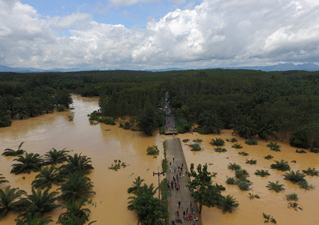 A bridge damaged by floods is pictured at Chai Buri District, Surat Thani province, southern Thailand, January 9, 2017. Picture taken January 9, 2017.