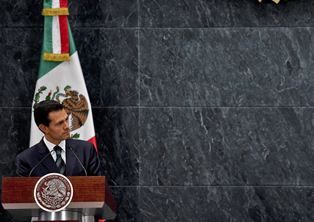 US presidential candidate Donald Trump (R) delivers a joint press conference with Mexican President Enrique Pena Nieto in Mexico City. (File)