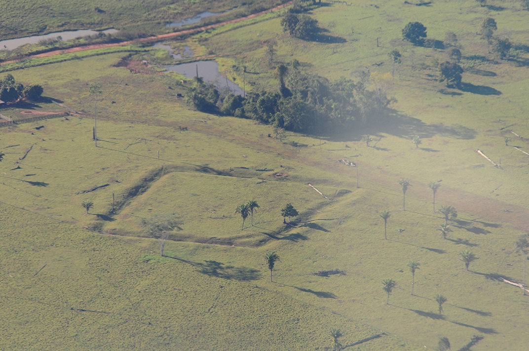 Geometric glyphs discovered in the Amazon. The impressive size of some of the glyphs can be seen in aerial photography.