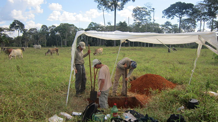 Research team digging one of the soil pits.