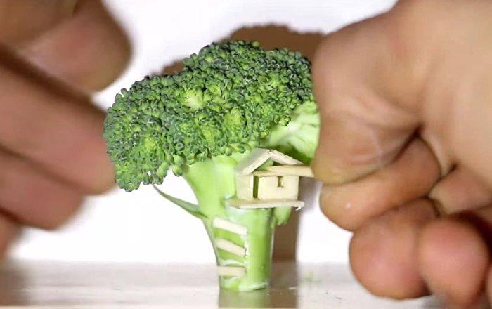 Miniature Tree House ... Hani Broccoli Tree is Not !?