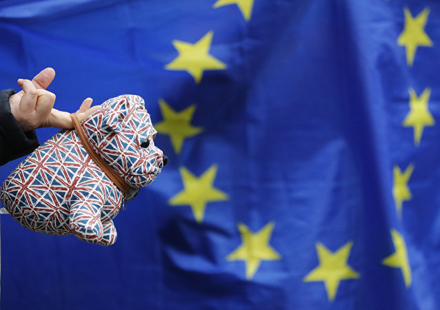 A Pro-EU membership supporter hold a stuffed toy dog covered in union flags, outside the High Court, on the second day of the lawsuit of Gina Miller, a founder of investment management group SCM Private in London, Monday, Oct. 17, 2016.