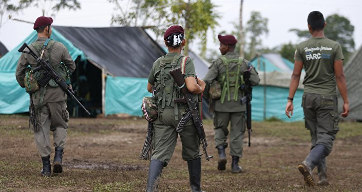 Revolutionary Armed Forces of Colombia, FARC, rebels walk in their camp in La Carmelita near Puerto Asis in Colombia's southwestern state of Putumayo, Tuesday, Feb. 28, 2017