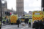 Emergency services respond after an incident on Westminster Bridge in London, Britain