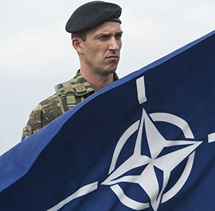 A members of NATO-led peacekeepers in Kosovo (KFOR) holds the NATO flag during the change of command ceremony in Pristina on September 3, 2014