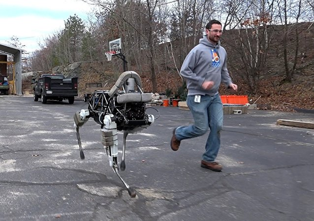 Boston Dynamics' quadruped robot, Spot.
