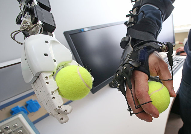 Mechatronic operations of a robot are demonstrated using a mechanical arm in the Intellectual Robotics, the scientific and research laboratory of anthropomorphic robotic systems in the Immanuel Kant Baltic Federal University in Kaliningrad. (File)