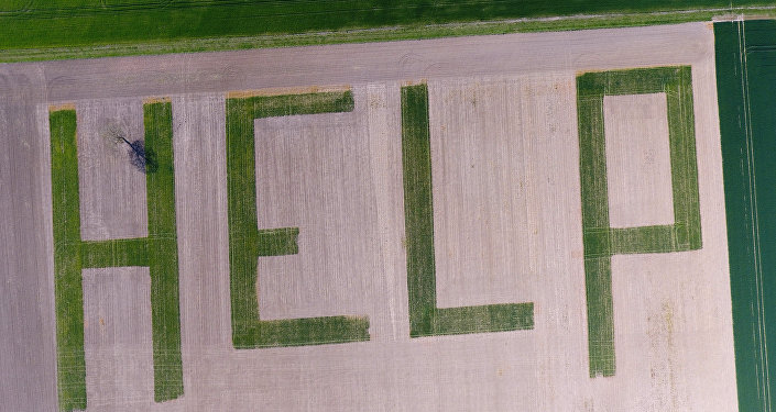 This aerial picture shows the word HELP formed by a farmer in his wheat field in Athee-sur-Cher near Tours, central France, to denounce the crisis in France's agricultural sector
