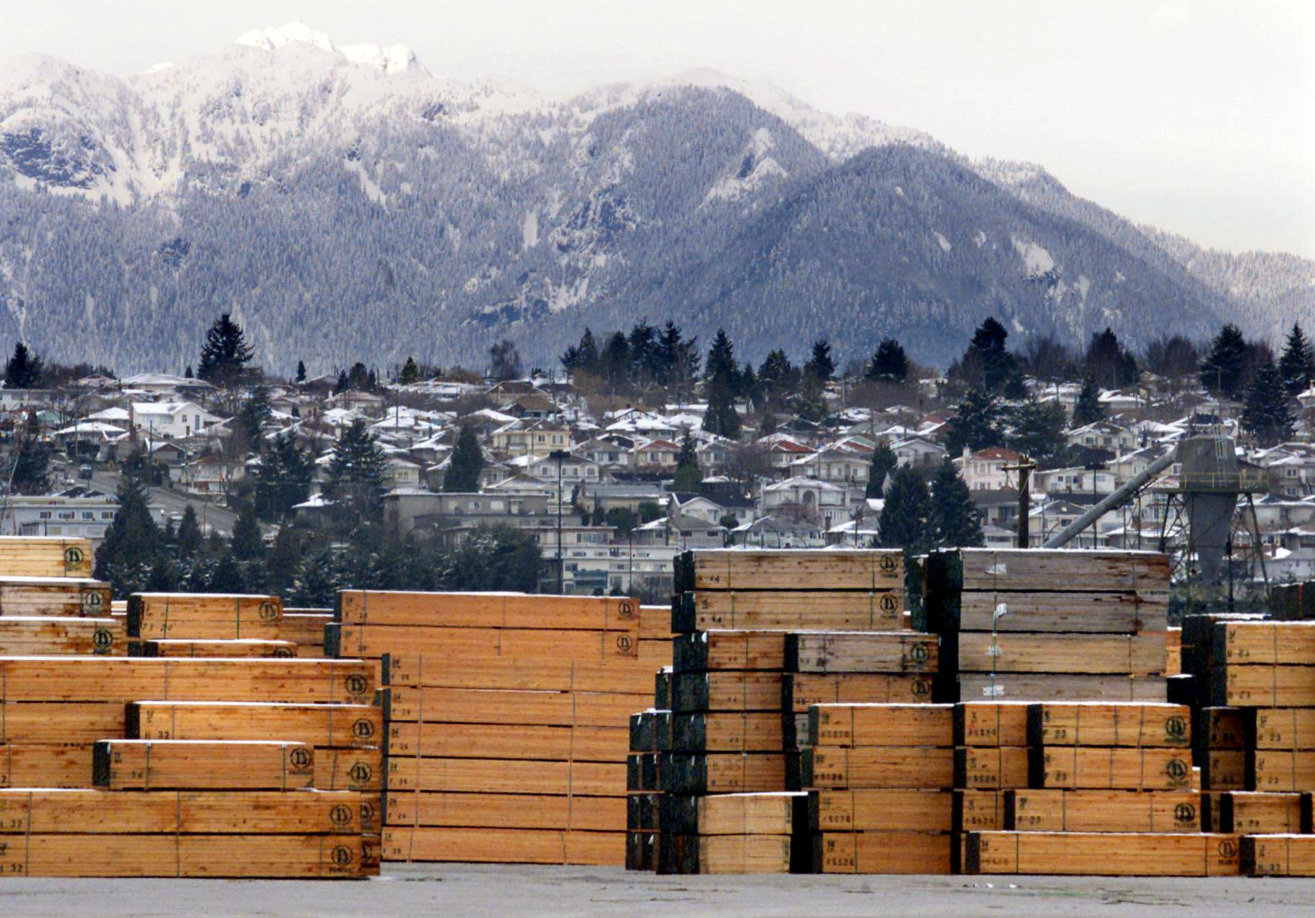 Piles of softwood lumber destined for export, are stacked at a Richmond, B.C., Canada lumberyard (File)