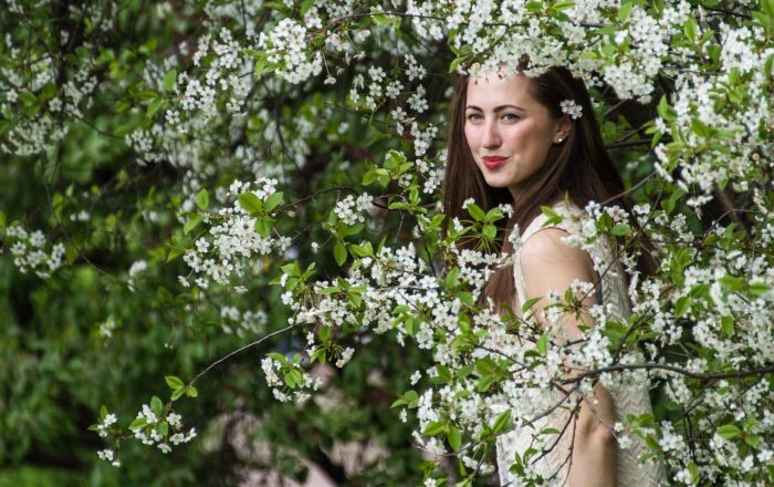 Apple Trees Start Blooming in Moscow