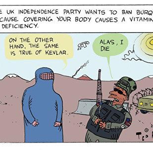 Burqa Ban UKIP Cartoon