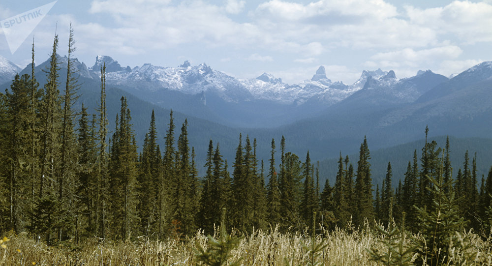 Yergaki range in the West Sayany mountain range, southern Siberia. (File)