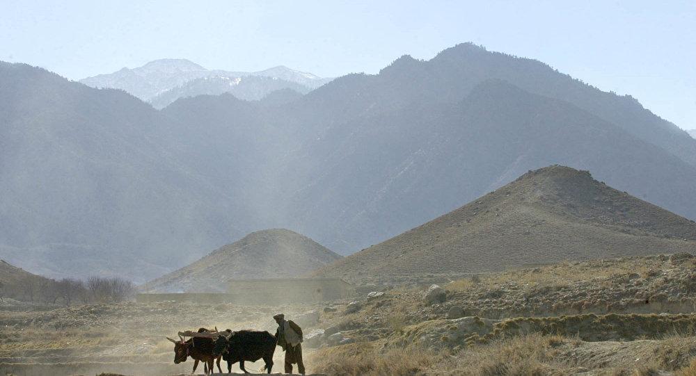 Afghanistan Daesh