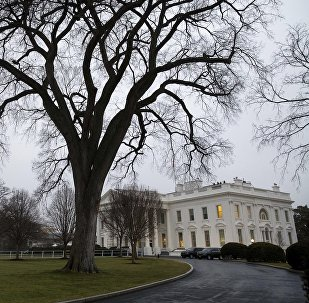 The White House on the morning of the first full day of President Donald Trump's administration, in Washington